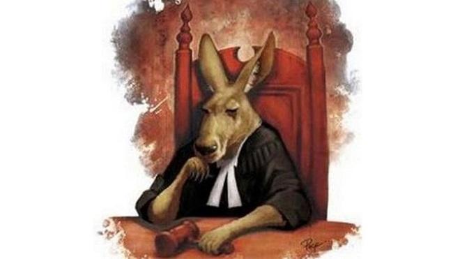 """قاضٍ تركي يصرخ: """"محاكم كنغر""""! تعرف على قصة التعبير"""