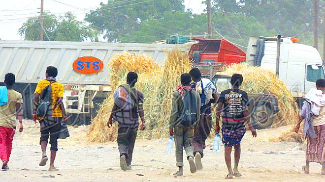 رصد 200 مهاجر أفريقي بيوم واحد في لحج