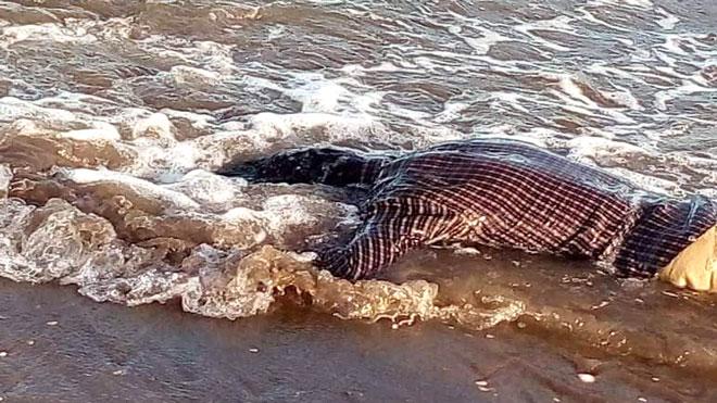 العثور على جثة مجهولة في شاطئ الحسوة