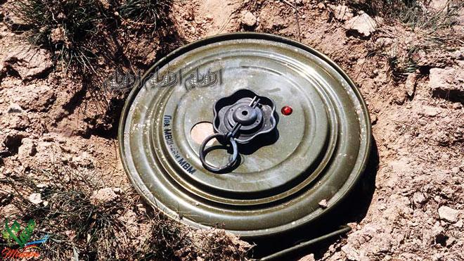 إصابة 4 مواطنين بلغم حوثي في الحديدة