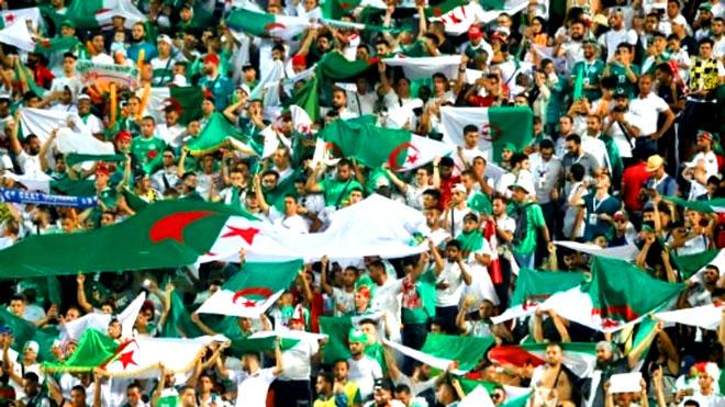 مصريون مع الجزائر... وآخرون: أبعِدوا عنها وعنا هذه الكأس