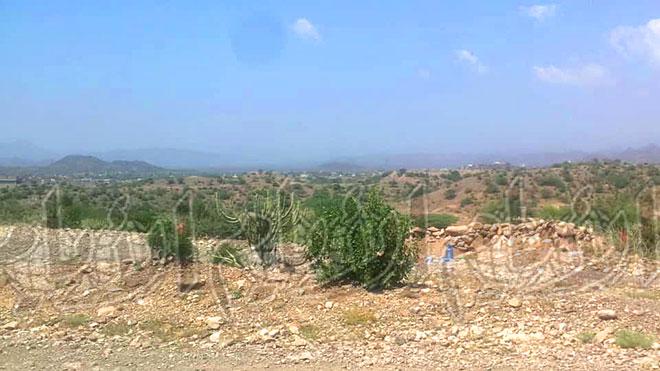 «الأيام» في منطقة حبيل العبدي بجبهة الفاخر
