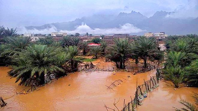 أمطار غزيرة وسيول جارفة تلحق أضرارا جسيمه في سقطرى
