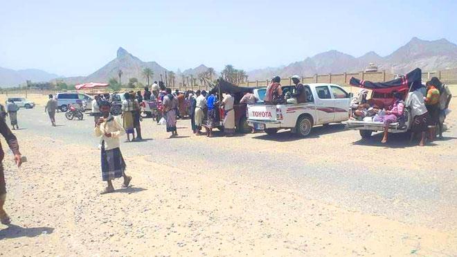 نقل سوق القات الى مطار بيحان تسبب بحوادث سير مفاجئة