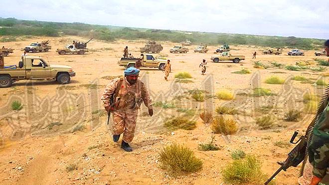الدعم والإسناد تدفع بتعزيزات عسكرية إلى ضواحي شقرة