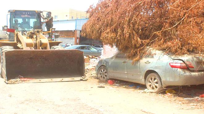 صورة اخرى من حملة إزالة العشوائيات بالشيخ عثمان